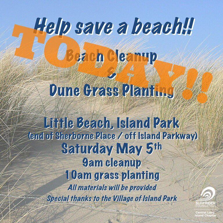 Beach Clean-Up and Dune Grass Planting at Little Beach, Island Park- May 5th!